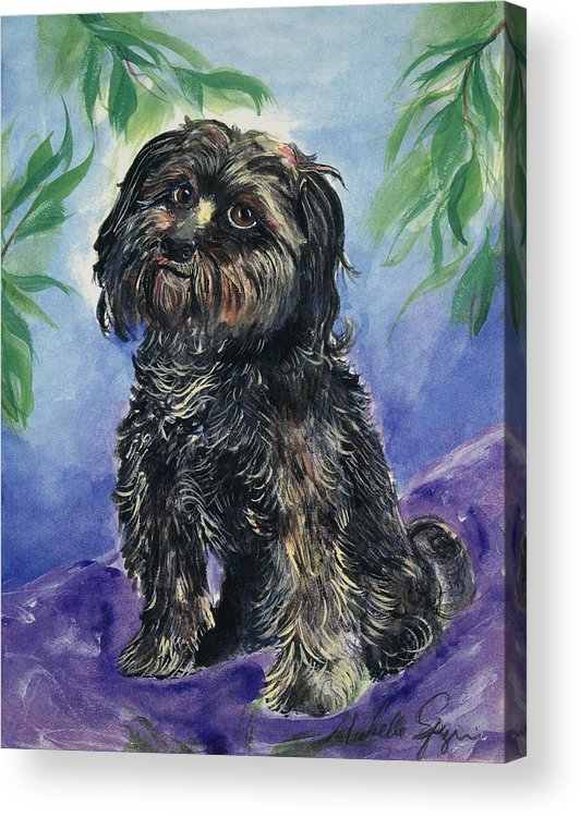 Pet Portraits Acrylic Print featuring the painting Black Dog by Michelle Spiziri