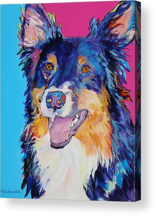 Dog Acrylic Print featuring the painting Blackjack by Pat Saunders-White