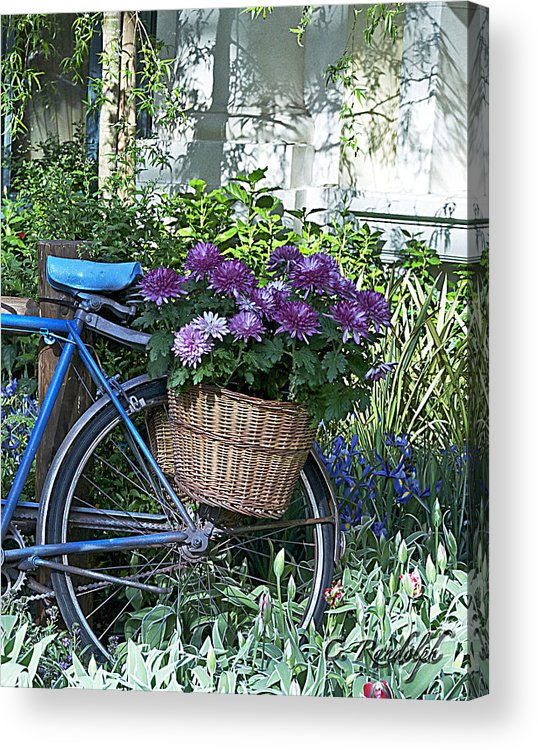 Blue Bike Acrylic Print featuring the photograph Blue Bike by Cheri Randolph