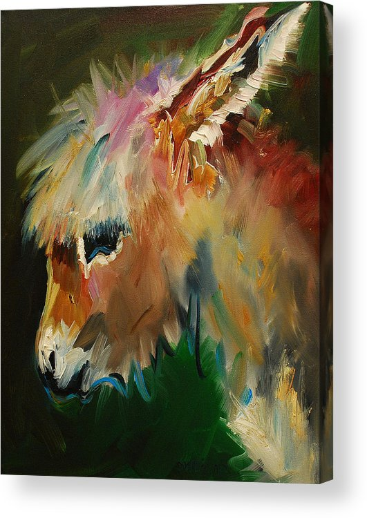Burro donkey acrylic print by diane whitehead for Cute abstract art