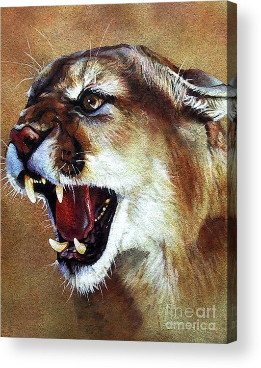 Southwest Art Acrylic Print featuring the painting Cougar by J W Baker