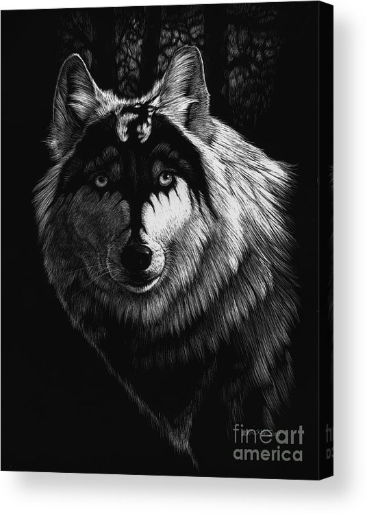Wolf Acrylic Print featuring the painting Dragon Wolf by Stanley Morrison