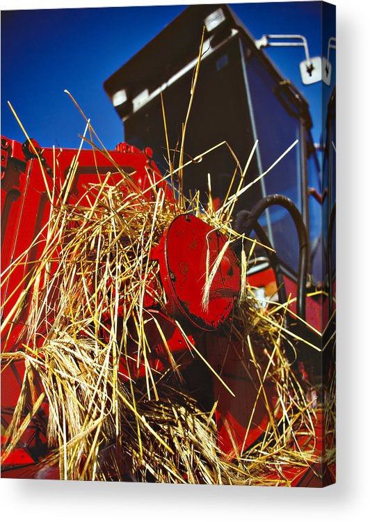 Combine Acrylic Print featuring the photograph Harvesting by Meirion Matthias