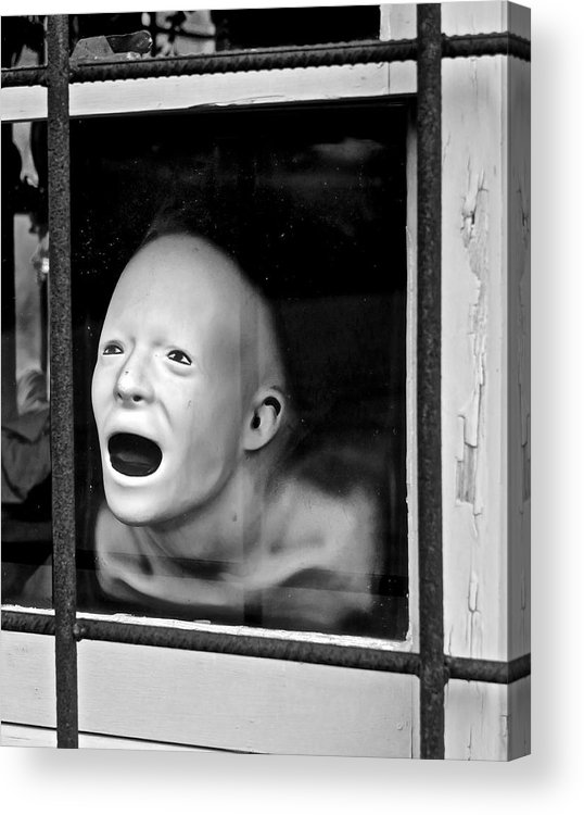 Black & White Photo Acrylic Print featuring the photograph Make Me Wanna Holler by Mike Reilly