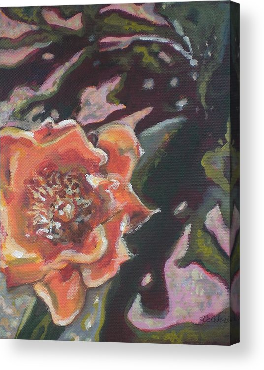 Orange Acrylic Print featuring the painting Orange Cactus Blossom by Aleksandra Buha
