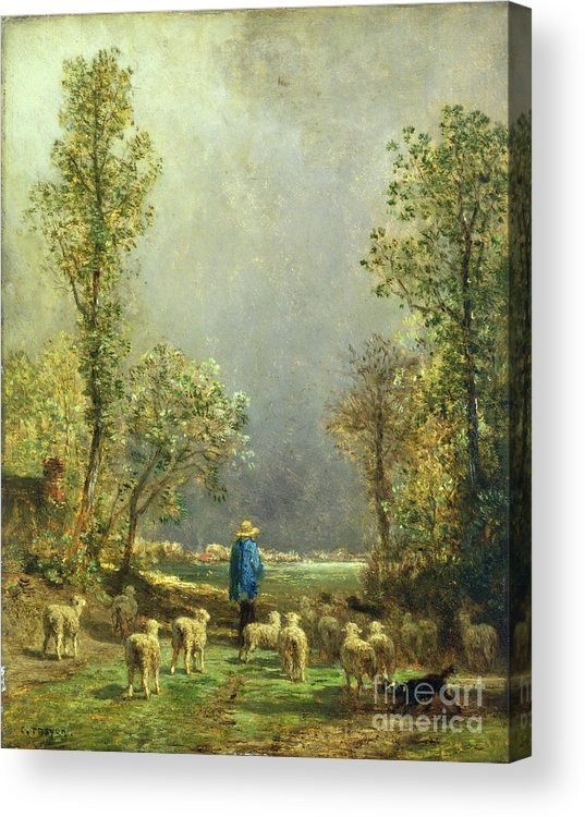 Sheep Acrylic Print featuring the painting Sheep Watching A Storm by Constant-Emile Troyon