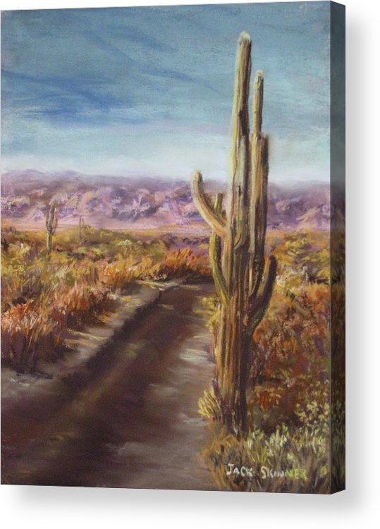 Desert Acrylic Print featuring the painting Southern Arizona by Jack Skinner
