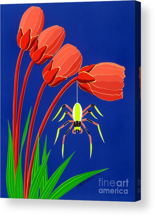 Nature Acrylic Print featuring the drawing Spider by Lucyna A M Green