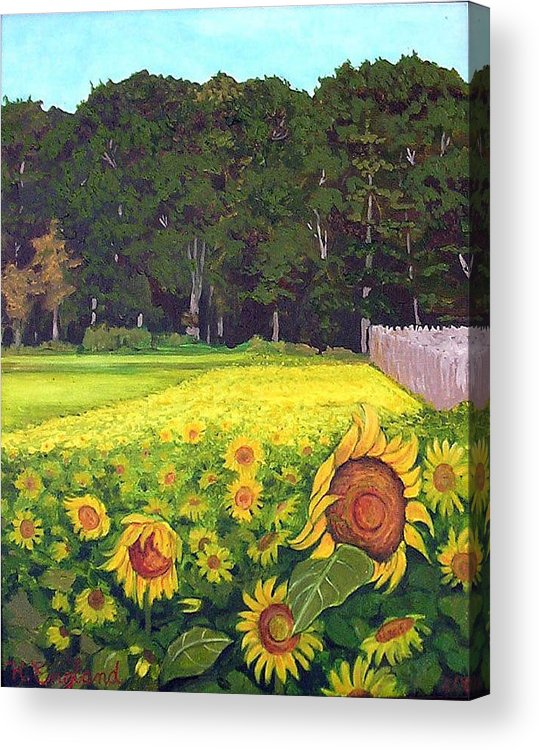 Sunflowers Summer Field Farm Impressionist Landscape Acrylic Print featuring the painting Sunflower Field by Hilary England