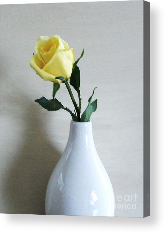 Yellow Rose Acrylic Print featuring the photograph The Yellow Rose Of by Marsha Heiken