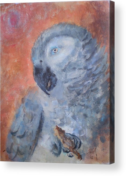African Grey Parrot Acrylic Print featuring the painting Vinny by Bryan Alexander