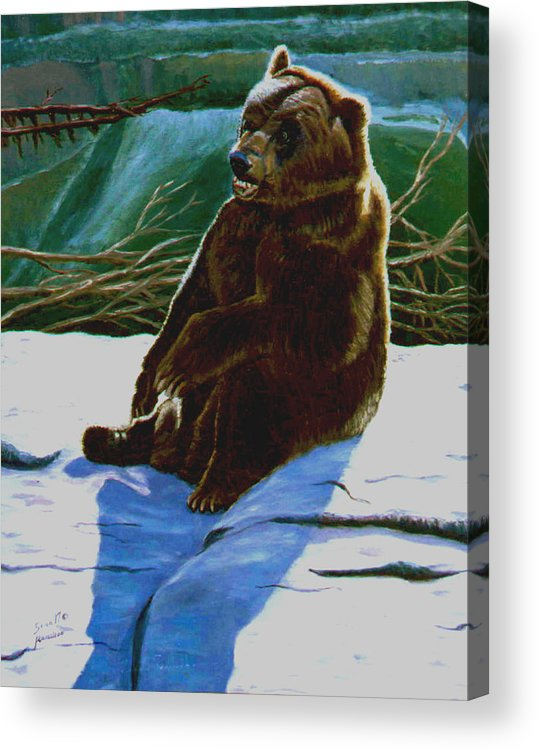 Original Oil On Canvas Acrylic Print featuring the painting The Bear by Stan Hamilton