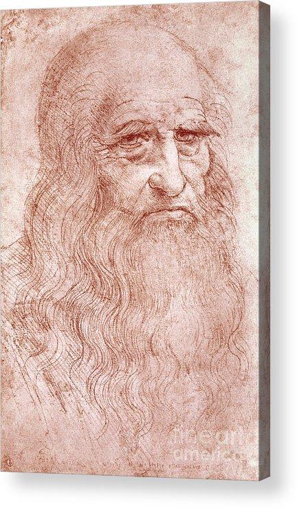 Old Acrylic Print featuring the painting Portrait Of A Bearded Man by Leonardo da Vinci