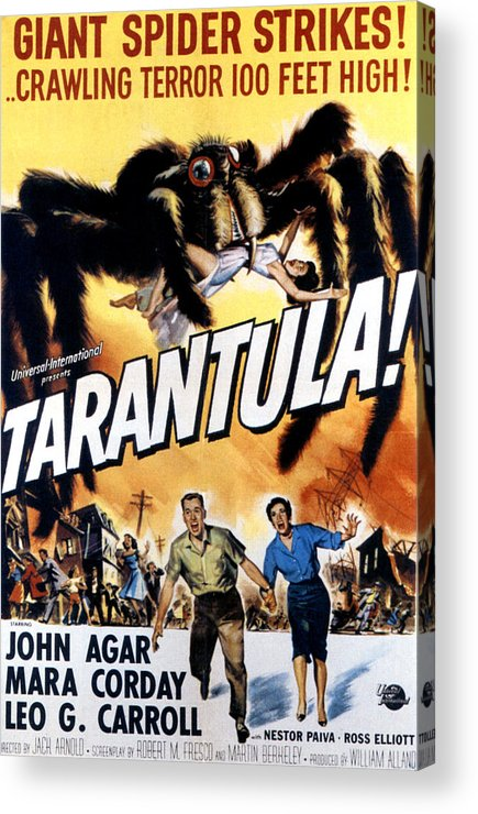 1950s Poster Art Acrylic Print featuring the photograph Tarantula, John Agar, Mara Corday, 1955 by Everett