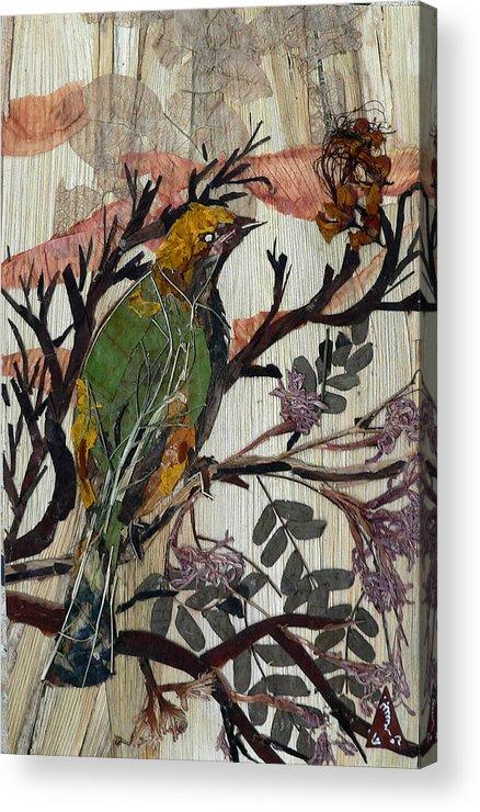 Green Bird Acrylic Print featuring the mixed media Green-yellow Bird by Basant Soni