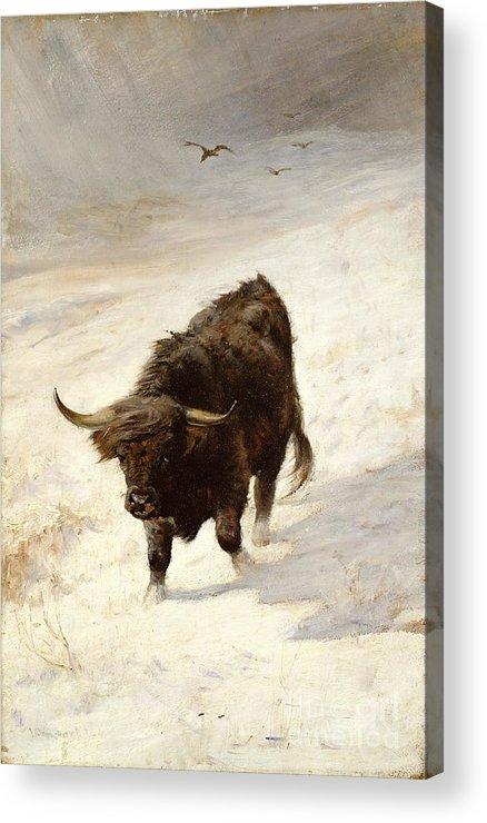 Black Beast Wanderer By Joseph Denovan Adam (1842-96) Acrylic Print featuring the painting Black Beast Wanderer by Joseph Denovan Adam