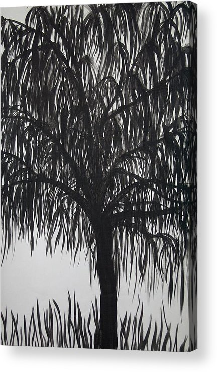 Willow Tree Landscape Black White Acrylic Print featuring the painting Black Willow by Sally Van Driest