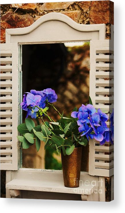 Hydrangea Photography Floral Photography Rural Photography Killruddery Photography Mirror Photography Bouquet Photography Whimsical Photography In Situ Photography Ireland Photography Canvas Print Suggested Metal Frame Greeting Card Poster Print Available On Acrylic Print featuring the photograph Hydrangeas In A Vase by Poet's Eye