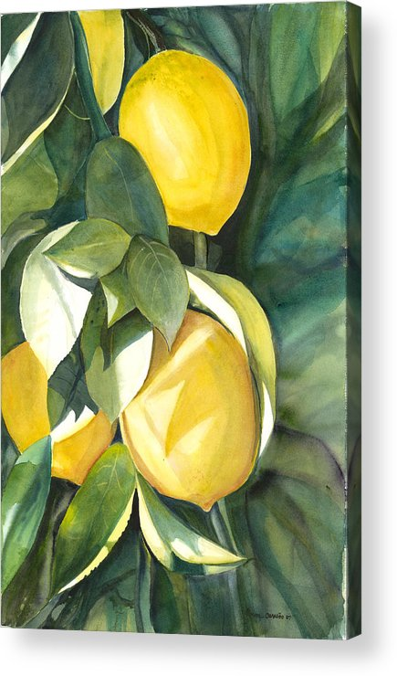 Cluster Of Lemons Acrylic Print featuring the painting Lemons by Ileana Carreno