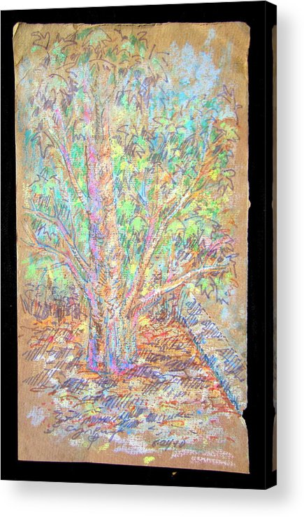 Layover Review Acrylic Print featuring the mixed media Lr I 1 4 5 The Gift by Streetsmartart Streetsmartart