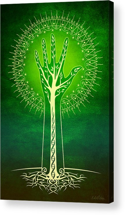Nature Acrylic Print featuring the digital art Reach by Cristina McAllister