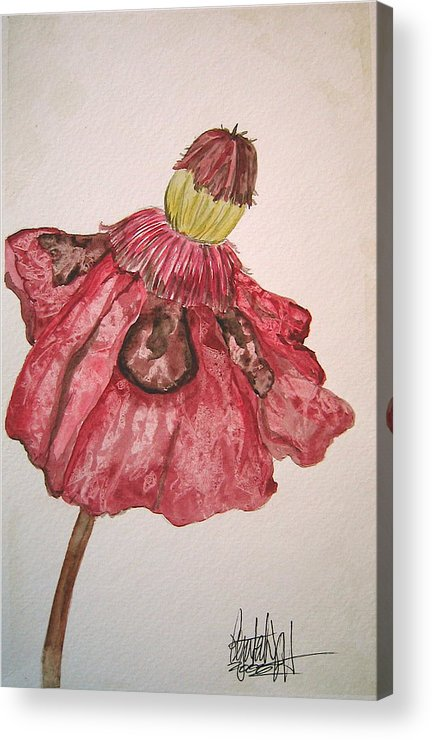Original Art Acrylic Print featuring the painting Red Poppy by K Hoover