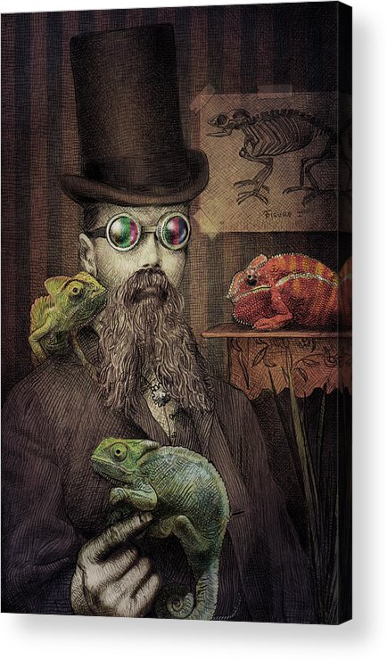 Illustration Acrylic Print featuring the drawing The Chameleon Collector by Eric Fan
