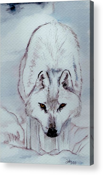 Wolf.inter Wolf Acrylic Print featuring the painting White Wolf by Debra Sandstrom