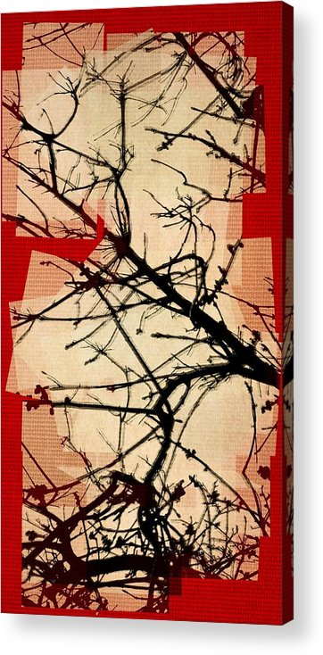 Mixed Media Acrylic Print featuring the mixed media Untitled N by Rene Avalos