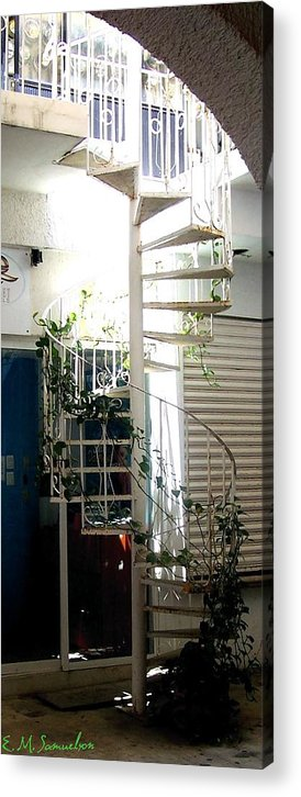 Plant Acrylic Print featuring the photograph White Stairs In The Sun by Elise Samuelson