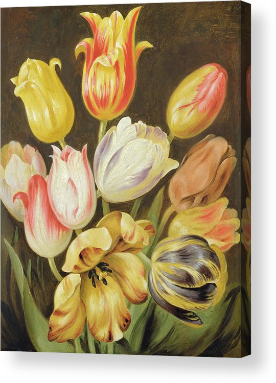 Blumenstuck Acrylic Print featuring the painting Flower Study by Johann Friedrich August Tischbein