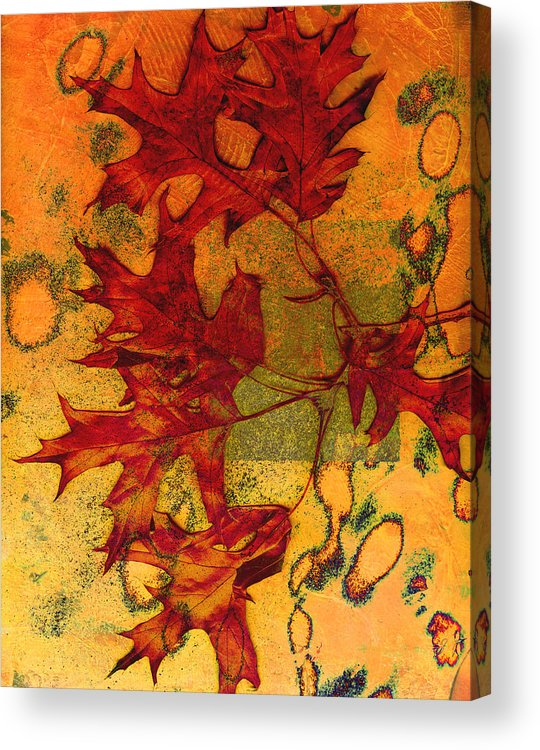 Autumn Leaves Acrylic Print featuring the photograph Autumn Leaves by Ann Powell