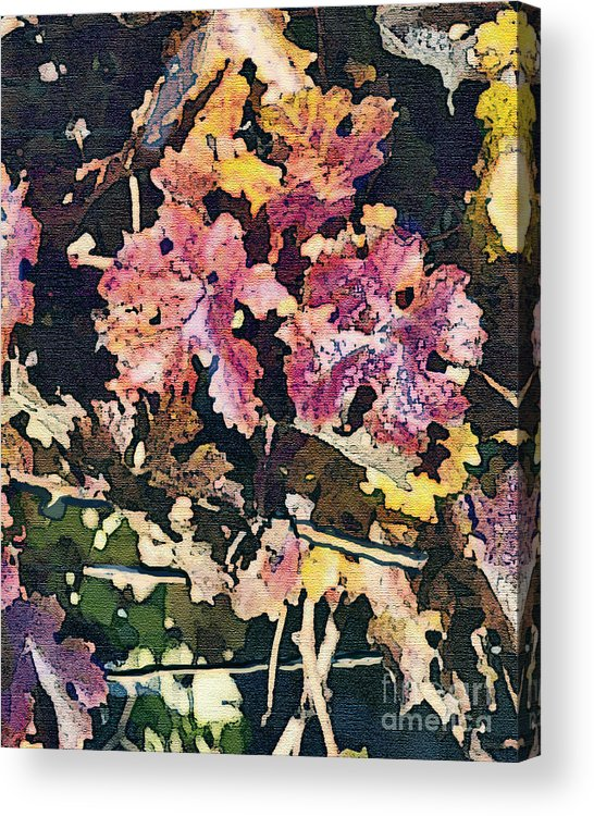Corde Valle San Martin Ca Acrylic Print featuring the painting California Vineyard Series Fall Grape Leaves by Artist and Photographer Laura Wrede
