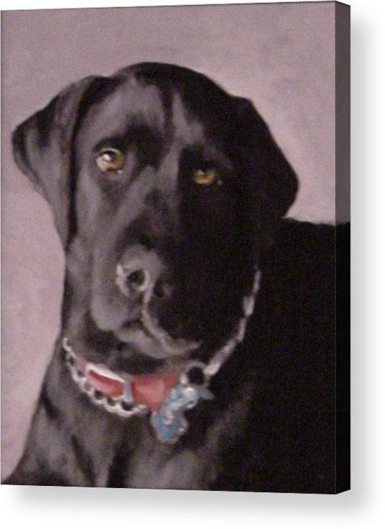 Dog Paintings Acrylic Print featuring the painting Definitely Hunter by David Zimmerman