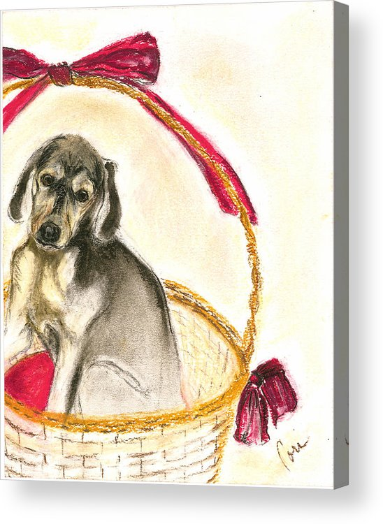 Dog Acrylic Print featuring the drawing Gift Basket by Cori Solomon