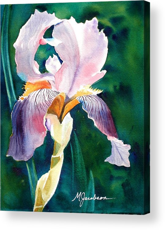 Iris Acrylic Print featuring the painting Iris 1 by Marilyn Jacobson