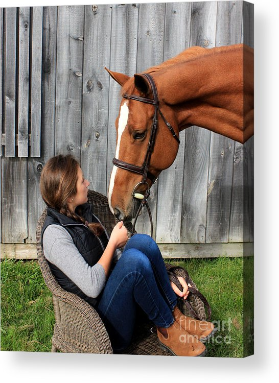 Acrylic Print featuring the photograph Katherine Pal 10 by Life With Horses