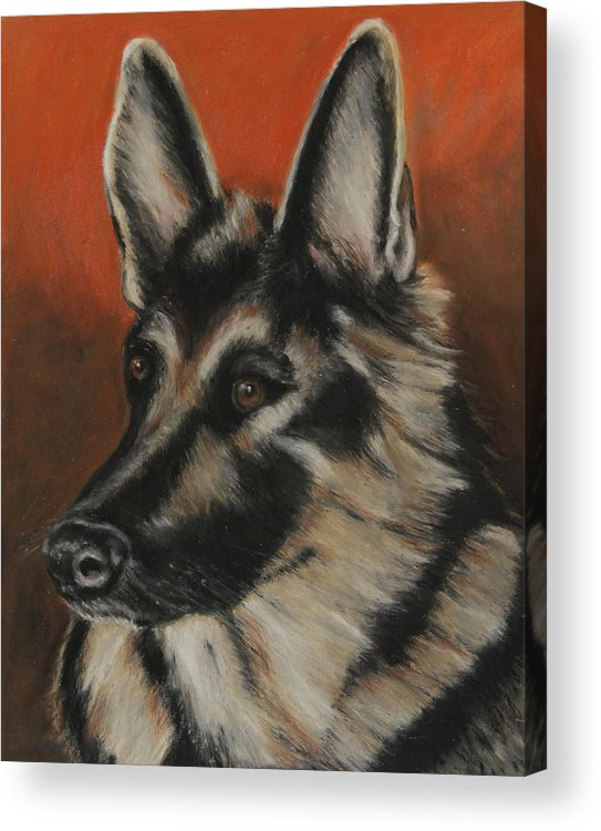 Animal Acrylic Print featuring the painting My Sadie by Jeanne Fischer