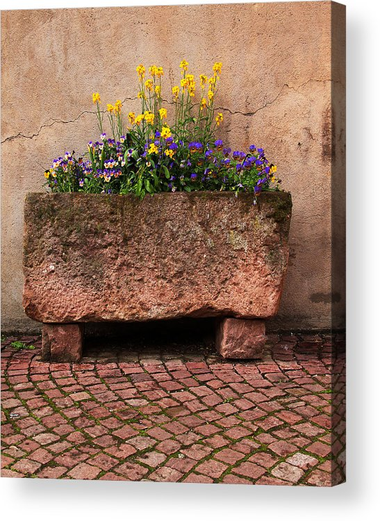 Flowers Acrylic Print featuring the photograph Old Stone Trough And Flowers In Alsace France by Greg Matchick