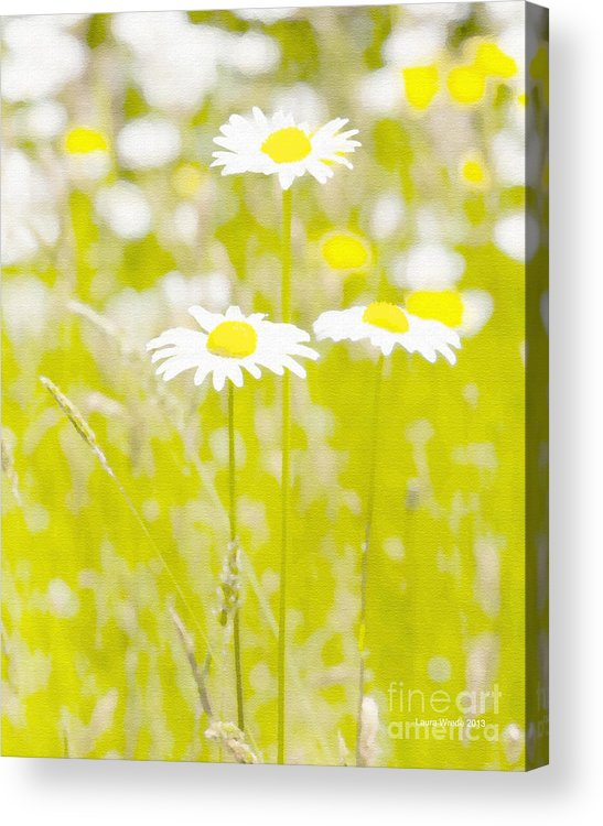 Daisy Acrylic Print featuring the painting Oopsy Daisy by Artist and Photographer Laura Wrede