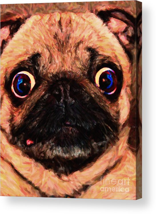 Animal Acrylic Print featuring the photograph Pug Dog - Painterly by Wingsdomain Art and Photography