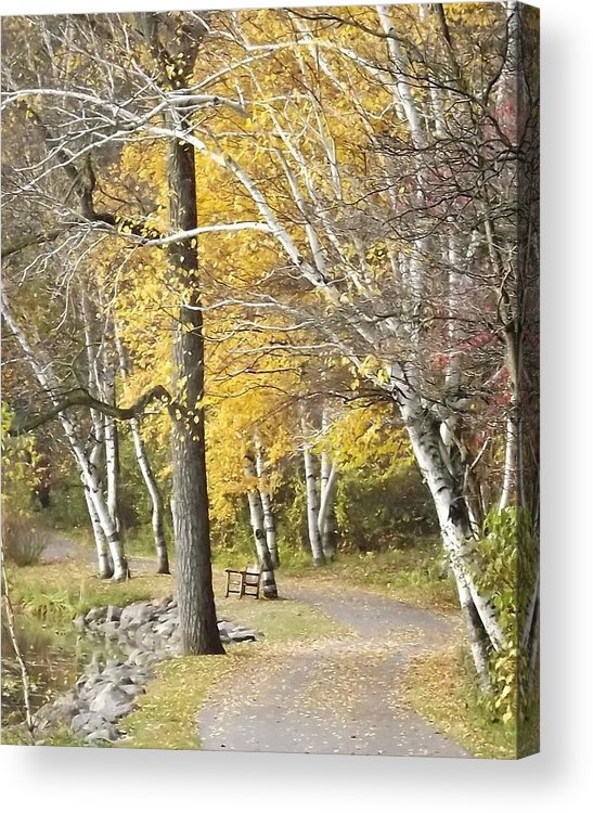 Landscape Acrylic Print featuring the photograph Secluded Lake Road by Bill Woodstock