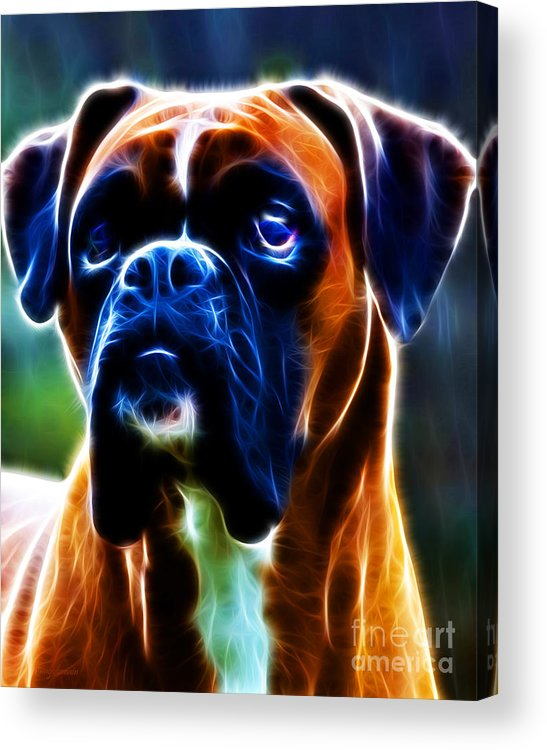 Animal Acrylic Print featuring the photograph The Boxer - Electric by Wingsdomain Art and Photography