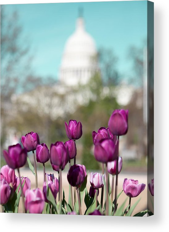 District Of Columbia Acrylic Print featuring the photograph Washington Dc by Kim Fearheiley