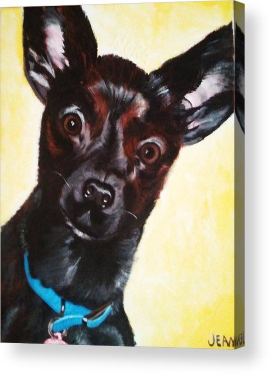 Chihuahua Acrylic Print featuring the painting Brindle Chihuahua Ears by Jean Kieffer