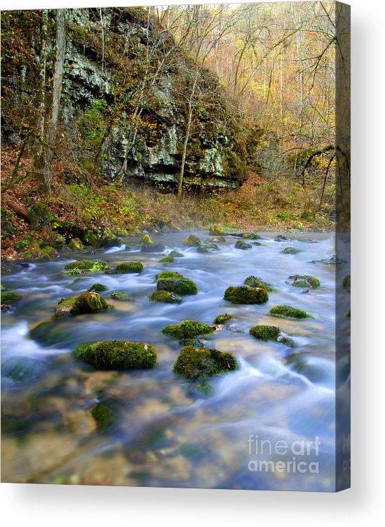 Greer Spring Acrylic Print featuring the photograph Greer Spring by Kevin Pugh