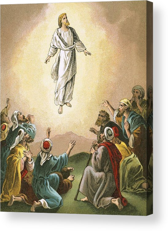 Bible; Ascension; Jesus; Christ; Heaven Acrylic Print featuring the painting The Ascension by English School