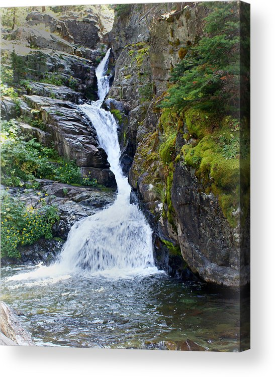 Glacier National Park Acrylic Print featuring the photograph Tricky Falls by Marty Koch