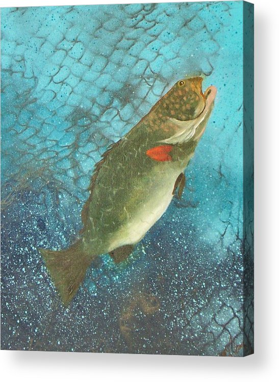 Grouper Fish Underwater Ocean Fishing Netting Acrylic Print featuring the painting Underwater Grouper by Lynda McDonald