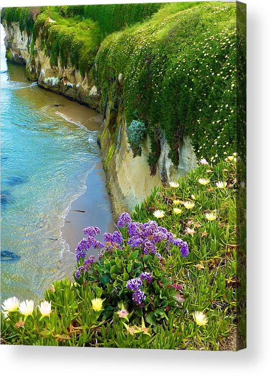 Ocean Acrylic Print featuring the photograph Waterfall Of Color by Debbie Johansson